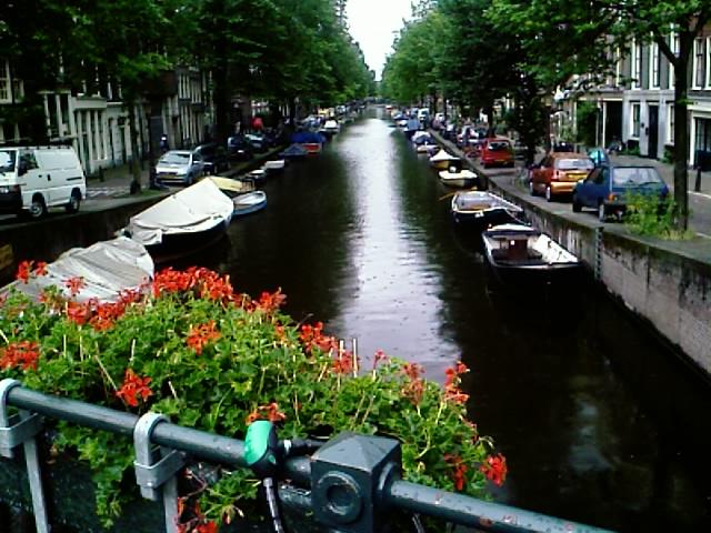 Amsterdam , 8:29AM local